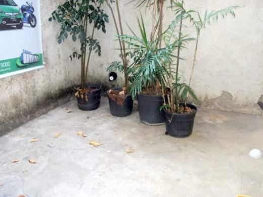 Foto 11 casa 4 quartos santa cruz - cod: 14132