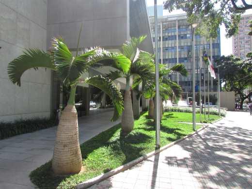 Foto 16 apartamento 1 quarto cidade jardim - cod: 3370